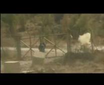 اختطاف طائرة الخطوط الجوية العراقية الرحلة 163