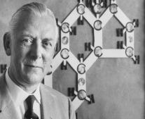 ولد العالم الكميائي أدولف Adolf Butenandt