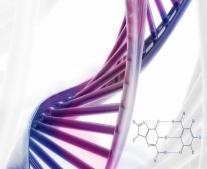 إكتشاف الحمض النووي DNA