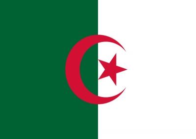 صدور قرار فرنسي يعتبر اللغة العربية لغة أجنبية في الجزائر